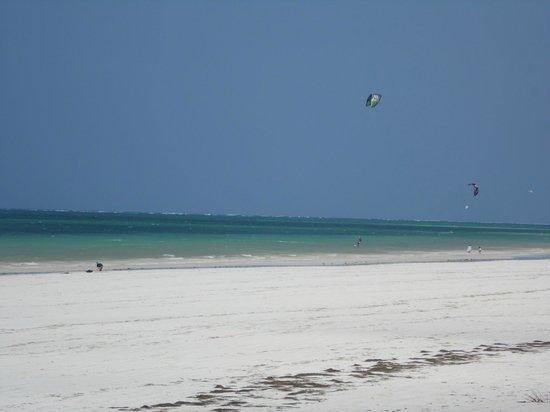 Diani Beachalets : more kite surfing