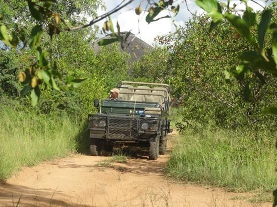 Africa on Foot Camp: Enoch en utomordentlig bra guide