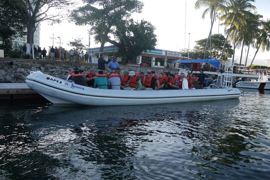Whale Watching Photo Safari by Vallarta Adventures: Cram them in to the Rib