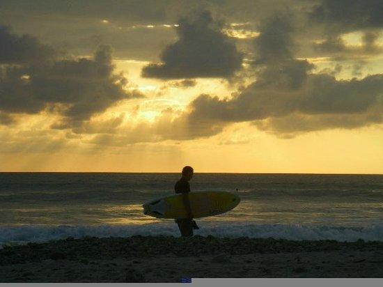 Hotel Kunterbunt : Surfing, Playa Samara