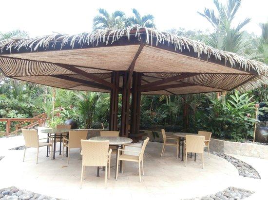 Tabacon Grand Spa Thermal Resort: terracita junto a piscinas