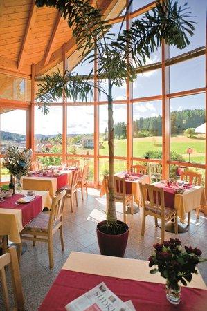 Berghotel Schiller: Schöne Panorama Sicht mitten in den Schwarzwald