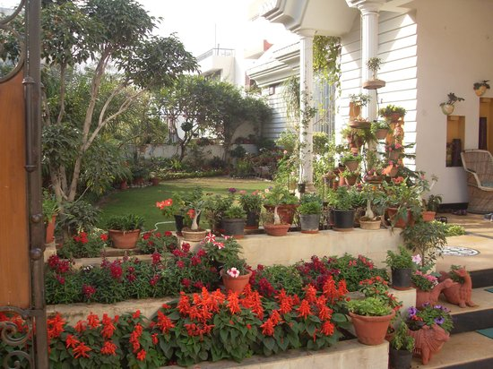 All Seasons Homestay Jaipur: front garden