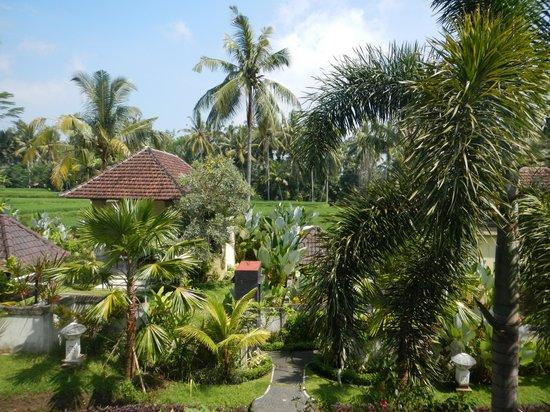 Bhanuswari Resort & Spa: Vue de la chambre