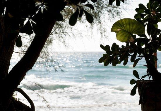 Hotel Paradiso Residence : sea