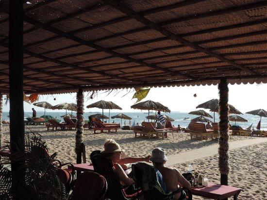 Highland Beach Resort: bonos shack