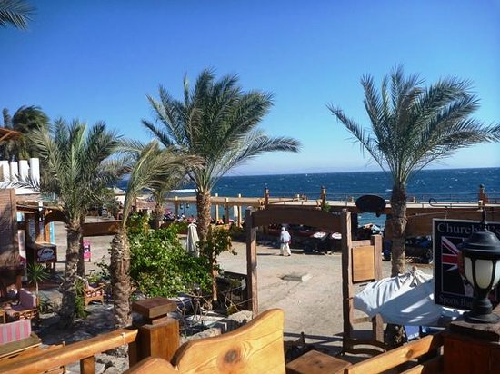 Red Sea Relax Resort: View from the deck area of the bar