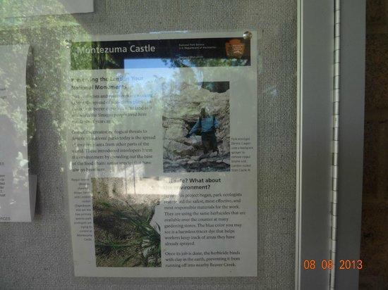 Montezuma Castle National Monument: INFO