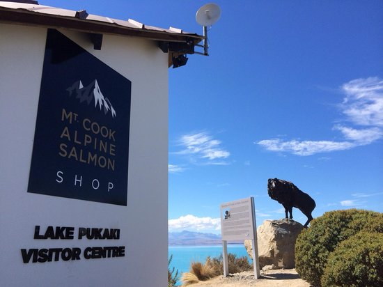 Mt. Cook Alpine Salmon Shop: サーモンショップ