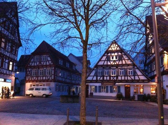 Stadthotel Waldhorn: Hotel surrounding