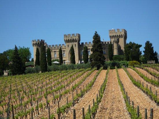 Hostellerie Chateau des Fines Roches : vista del castello