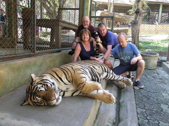 Thai Motorcycle Day Tours: A tiger by the tail
