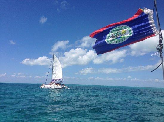 Blackhawk Sailing -  Tours : Enjoying the view