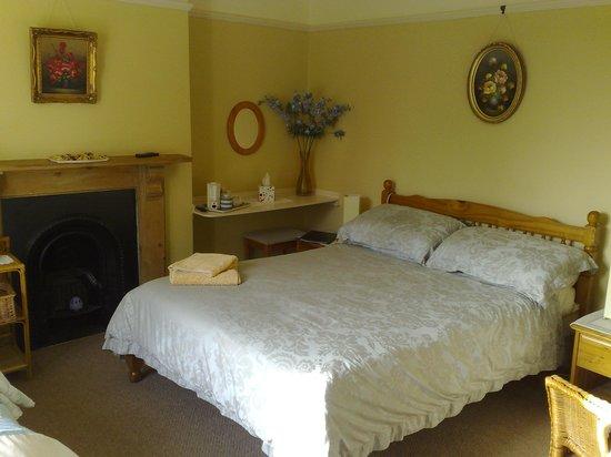 Lowarth Gwyth : En suite room