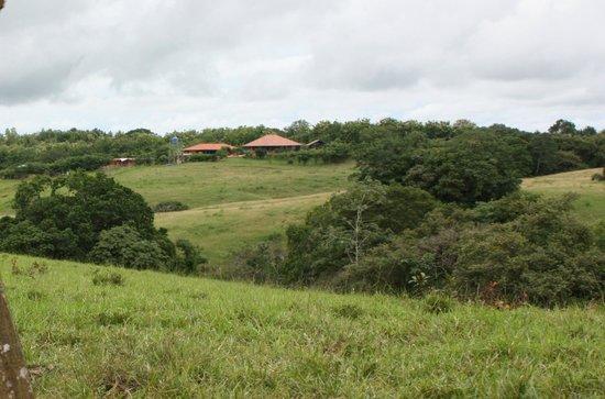 Hacienda Doña Carmen: Area de la finca