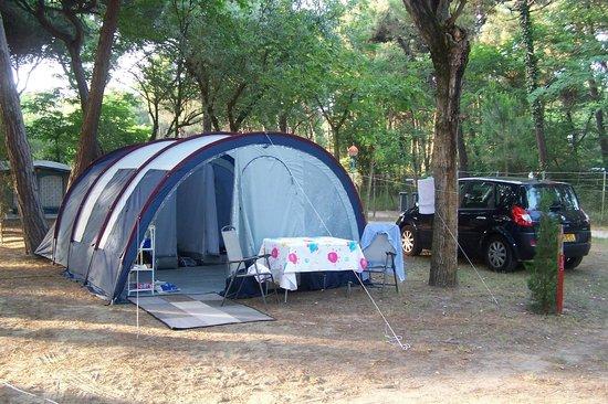 Piomboni Camping Village: Onze tent in het Pineta-bos