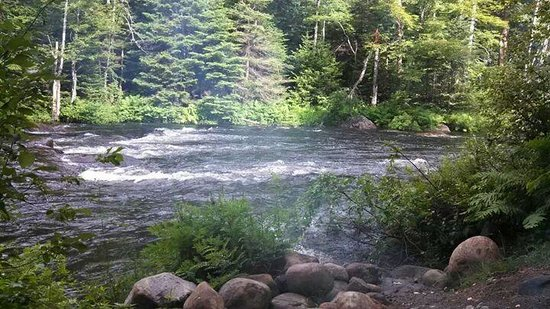 Singing Waters Campground: moose river