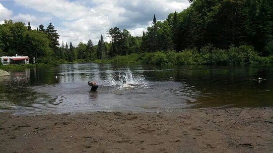 Singing Waters Campground: moose river swimming