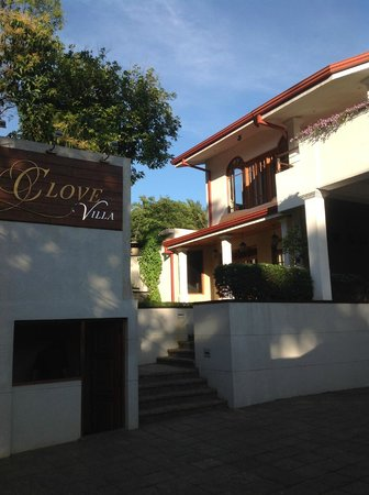 Clove Villa : Outdoors