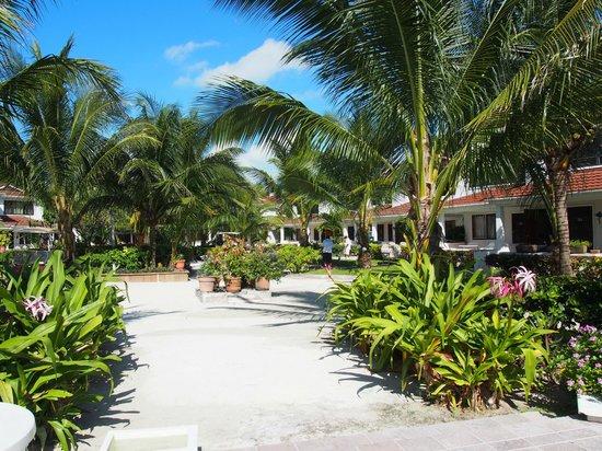 Paradise Villas: Center court