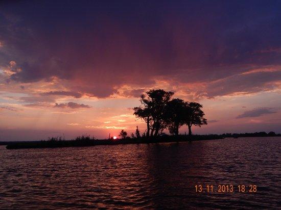 Sanctuary Chobe Chilwero : Atardeceres en el rio