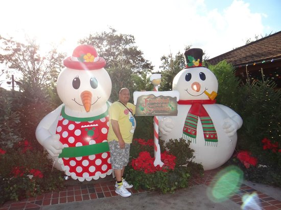 Disney Springs: christmas decorations