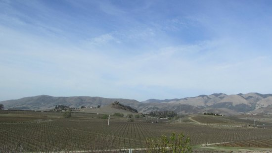 Breakaway Tours & Event Planning: View of the area near the wineries