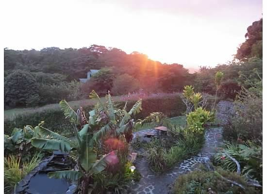 "Hidden Canopy Treehouses Boutique Hotel: Sunset ""tea"""