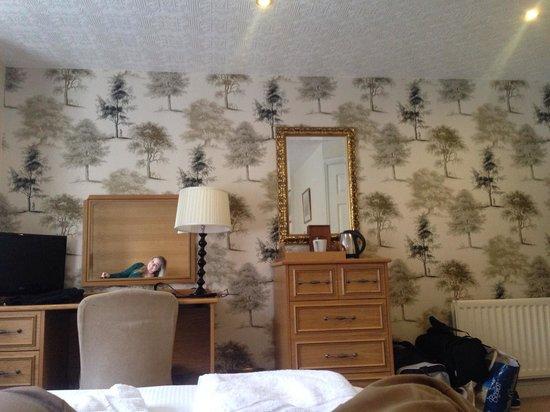 Lyzzick Hall Hotel: Hotel Room