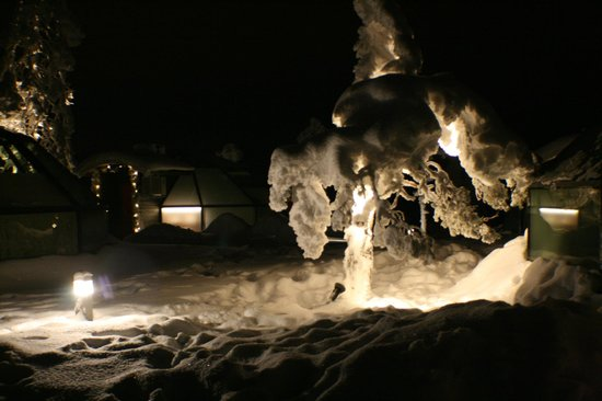 Golden Crown Levi Igloos: snow