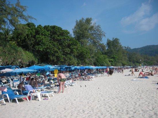 SP House Phuket: Ката