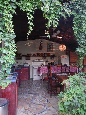 La Damiana Inn : Common shared ktichen in lovely gardens