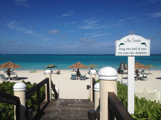 The Sands at Grace Bay : beach