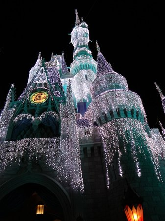 Magic Kingdom : Beautiful