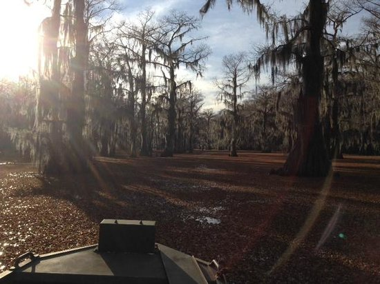 Caddo Outback Backwater Tours: Valentines Weekend 2014 on Caddo Lake