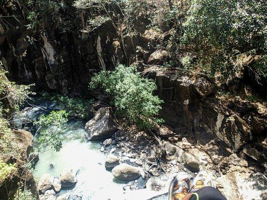 Jacamar Naturalist Tours: Great views