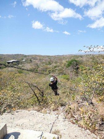Jacamar Naturalist Tours: The last zip line