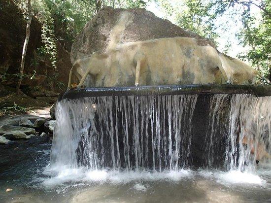 Jacamar Naturalist Tours: warm waters to soak in afterward to relax