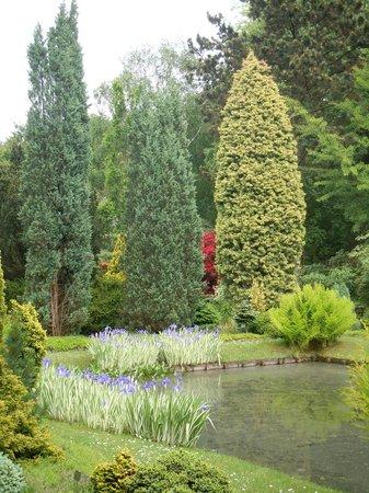 Arboretum Trompenburg: alle tinten groen
