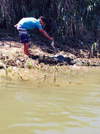 Crocodile Man Tour: River tour