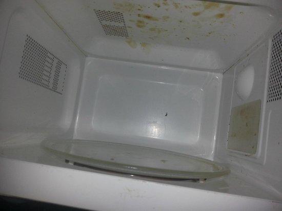 Seagulls  Bridlington: FIlthy top of microwave inside