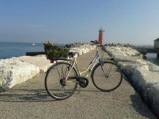 Lido: Passeggiata in bicicletta al faro di San Nicolò di Emanuela Talato