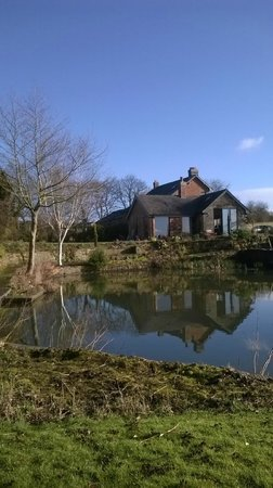 Hayeswood Lodge Boutique Bed & Breakfast: View of the house and pond