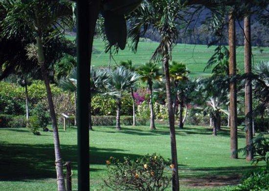 Maui Tropical Plantation: Beautiful