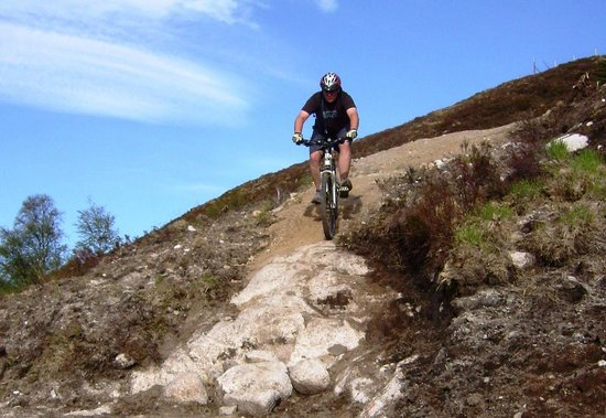Mountain Biking with Active Highs