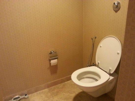 Grand Hyatt Istanbul: Туалет
