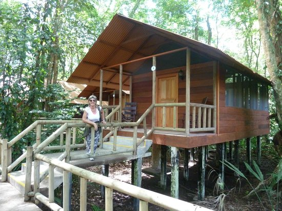 Evergreen Lodge: Lodge nella foresta