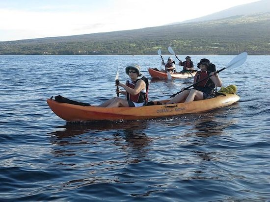 Maui Kayaks: Small group kayaking