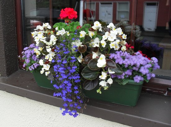 Juliet's B&b And Restaurant: Nice touch on your window