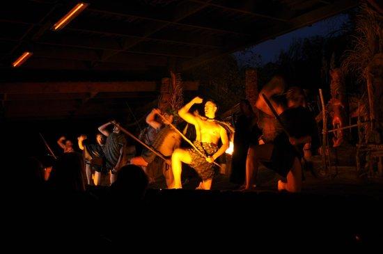Mitai Maori Village: Maori War Dance
